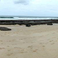 image beach4-jpg